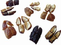 Sliced Dates 1/8